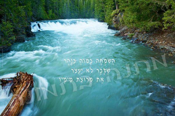 השמחה כמוה כנהר