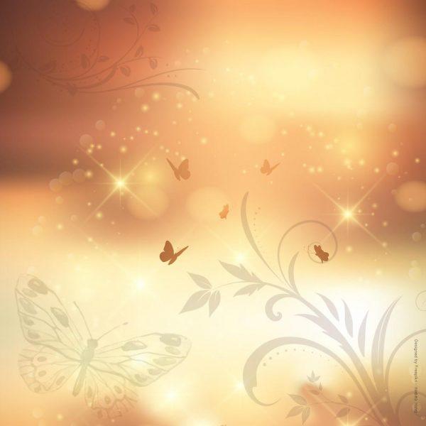 1021-פרפרים באור