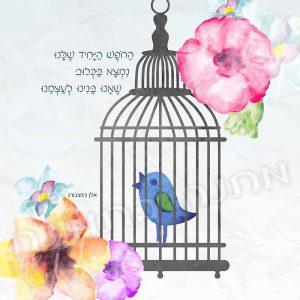 חירות ושחרור