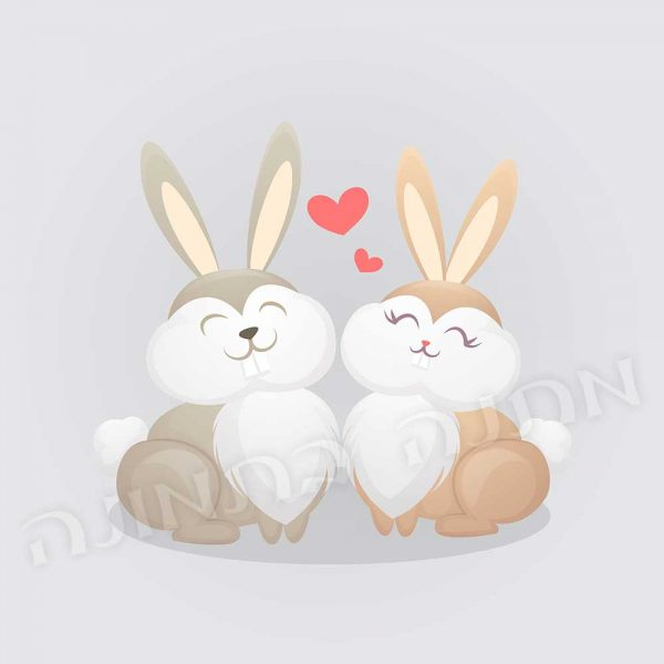 ארנבים מאוהבים