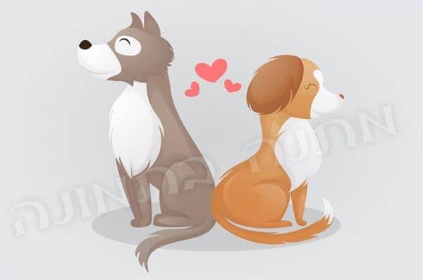 כלבים מאוהבים